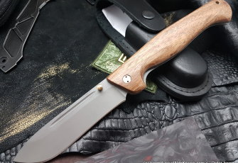 Partner-2 knife (95х18, wood)